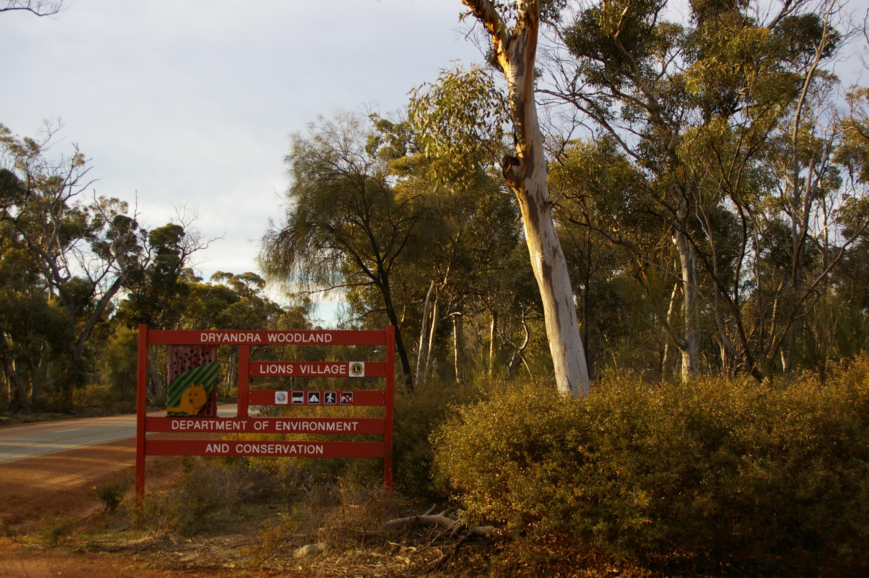 nsa meetup finda Western Australia