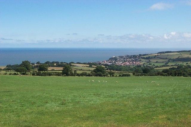 Farmland above Colwyn Bay - geograph.org.uk - 217896