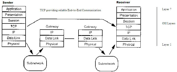 communication networks  tcp and udp protocols
