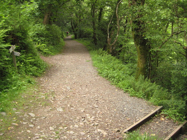 Footpath in the Heddon Valley - geograph.org.uk - 1603967