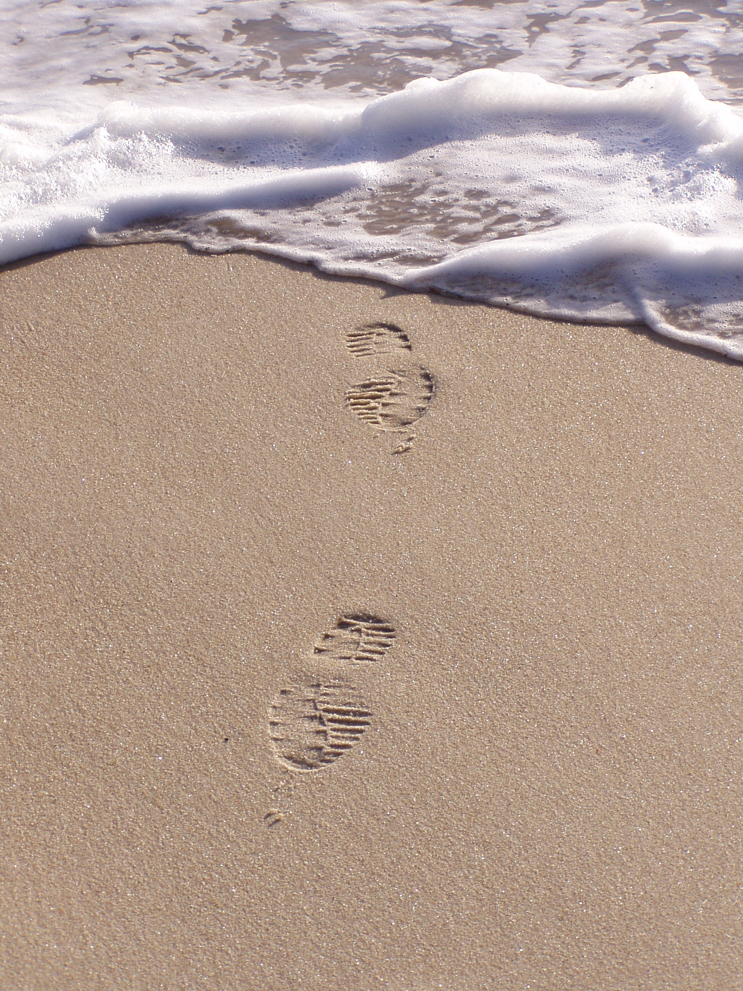 footprints in the sand Footprints in the sand throw beautiful and inspirational, our footprints in sand throw will make a lovely addition to your living room or a friend's.