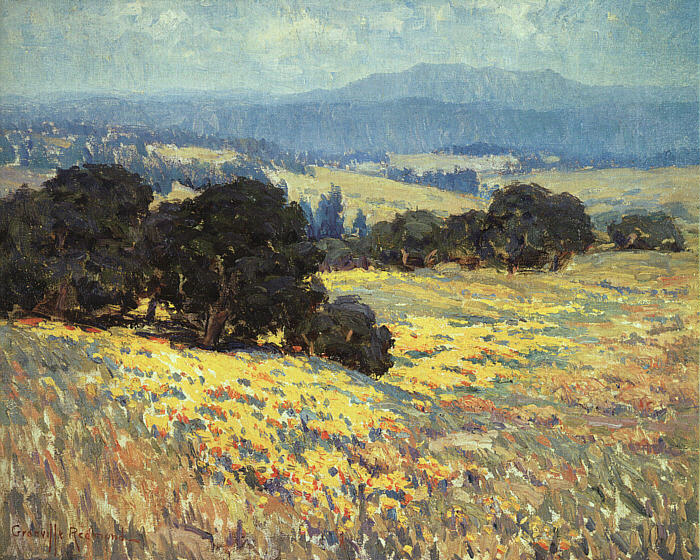 Image Result For California Poppies Los Angeles