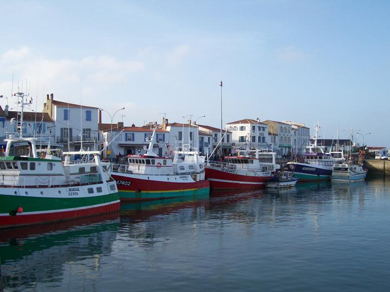 File ile d yeu bateaux peche port wikimedia commons - Yeu annonces bateau peche ...