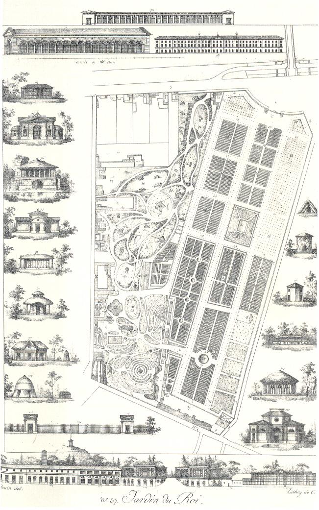 Jardin des Plantes – Wikipedia