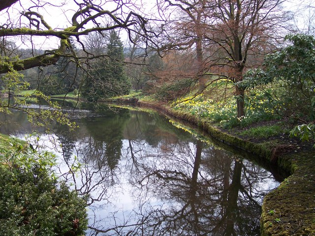 File:Lakeside in spring at Lyme Park - geograph.org.uk - 1248934.jpg
