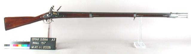 Image result for Model 1816 Springfield