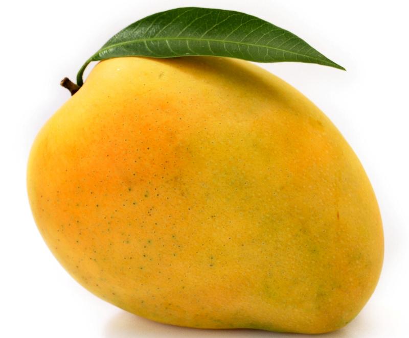 Resultado de imagen de mango