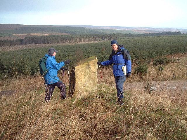 Millennium Stone, Hamsterley Forest - geograph.org.uk - 76606