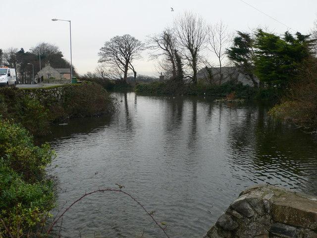 Nant Mill Pool - geograph.org.uk - 656009