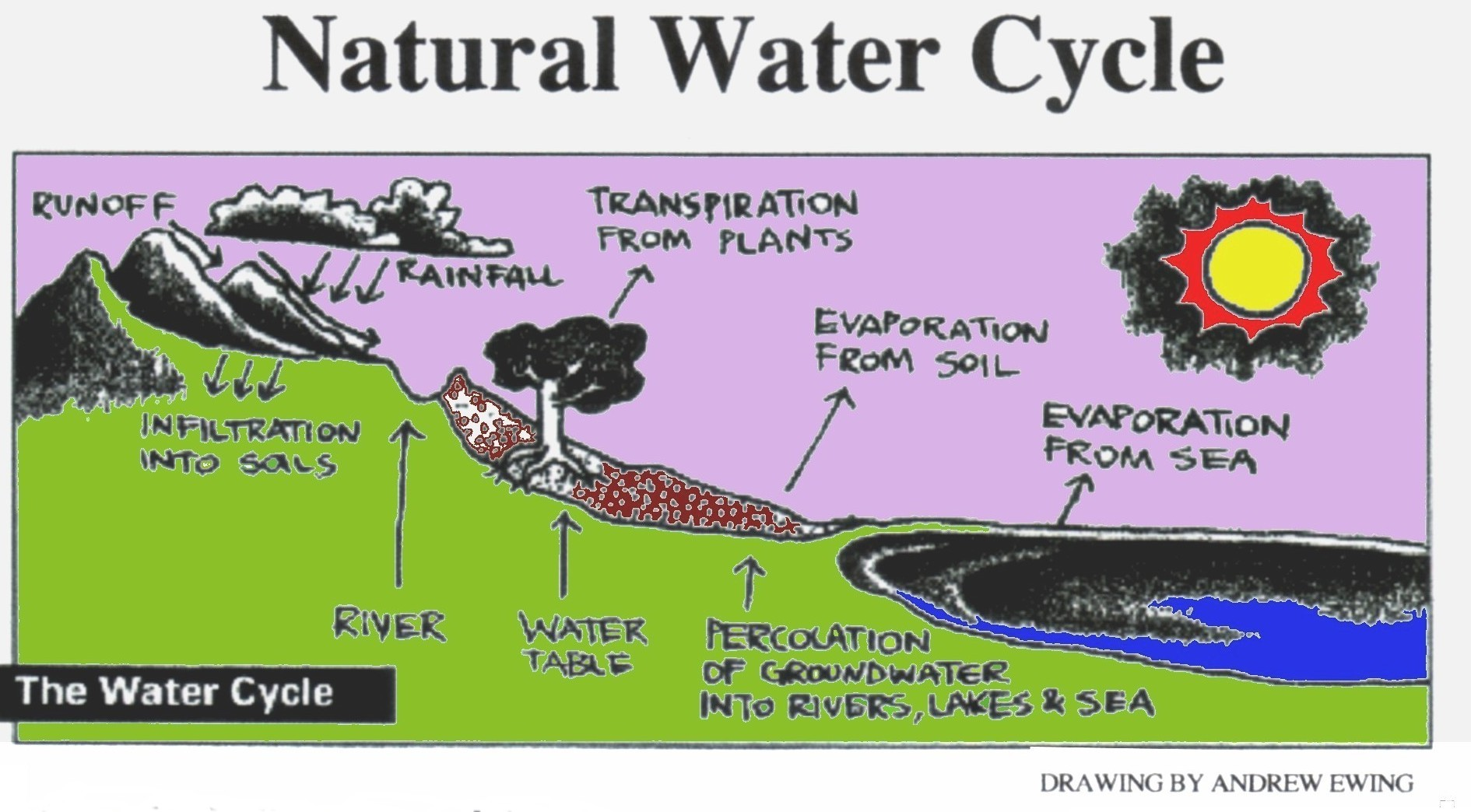 File Natural Water Cycle 1 Jpg Wikimedia Commons