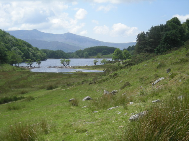 Northern end of Llyn Cynwch - geograph.org.uk - 835491