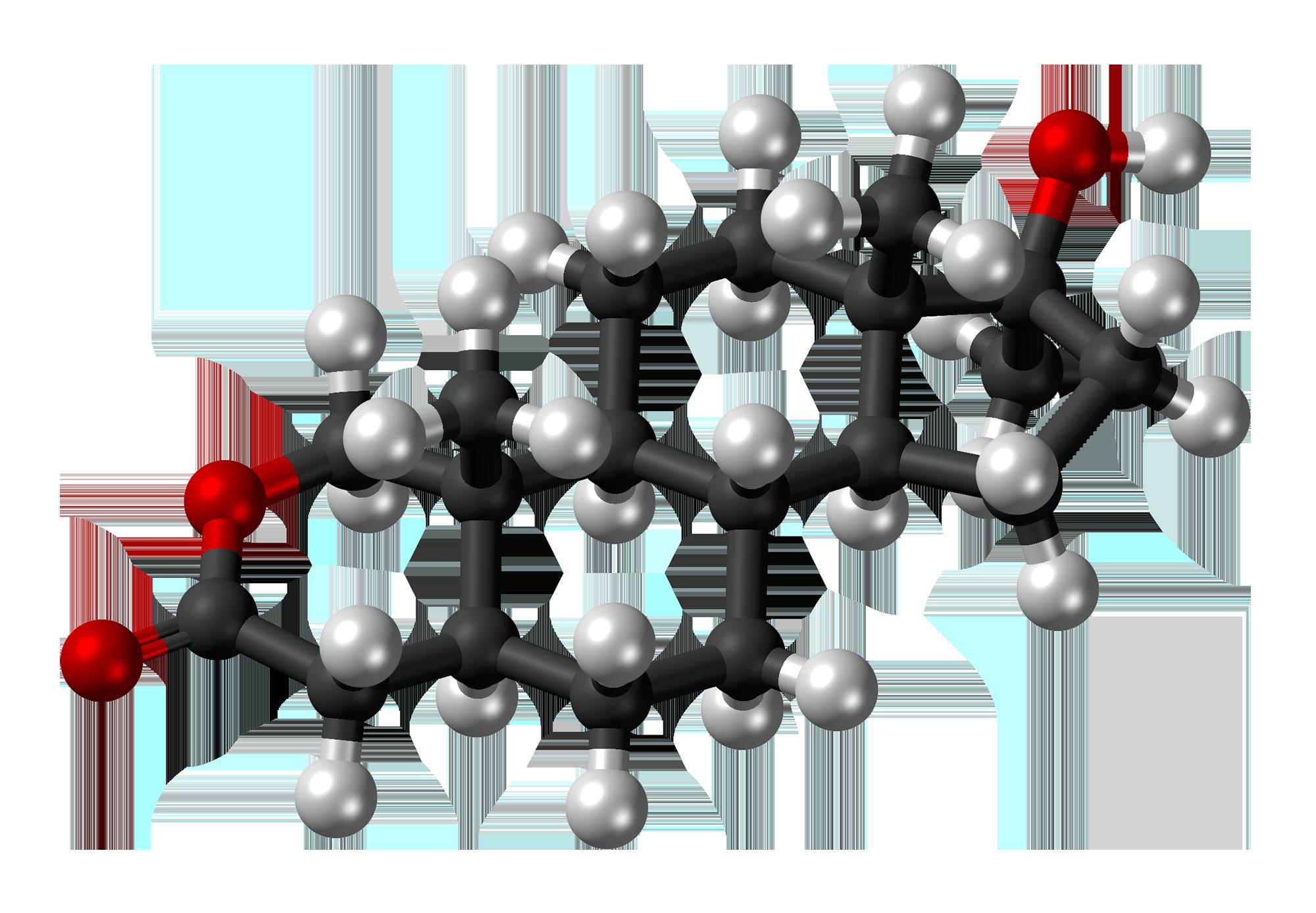 Oxandrolone - Wikiwand