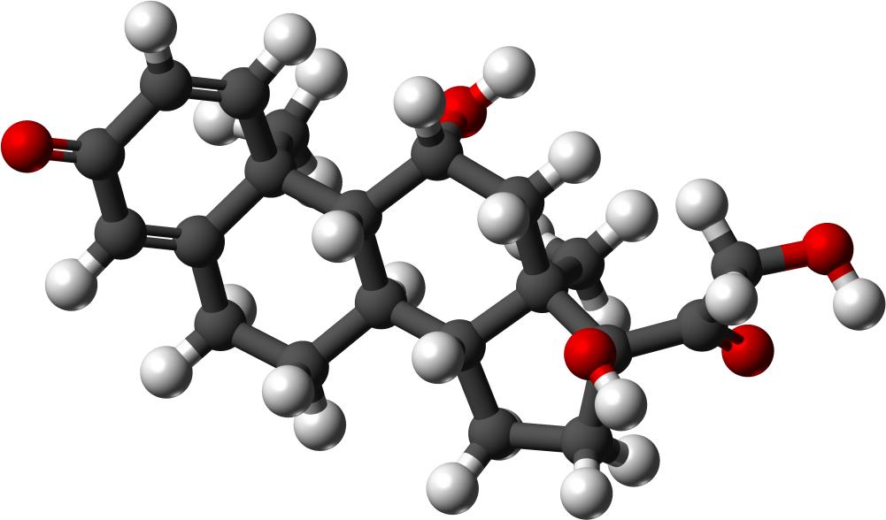 преднизолон отзывы врачей при аллергии