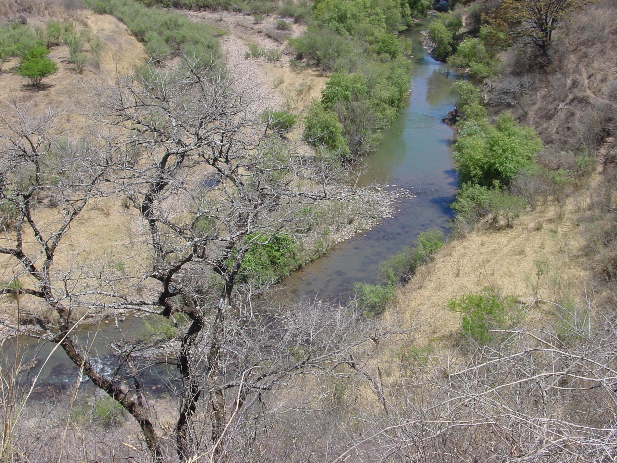 FileRo Del Camino A Talpa De Allende