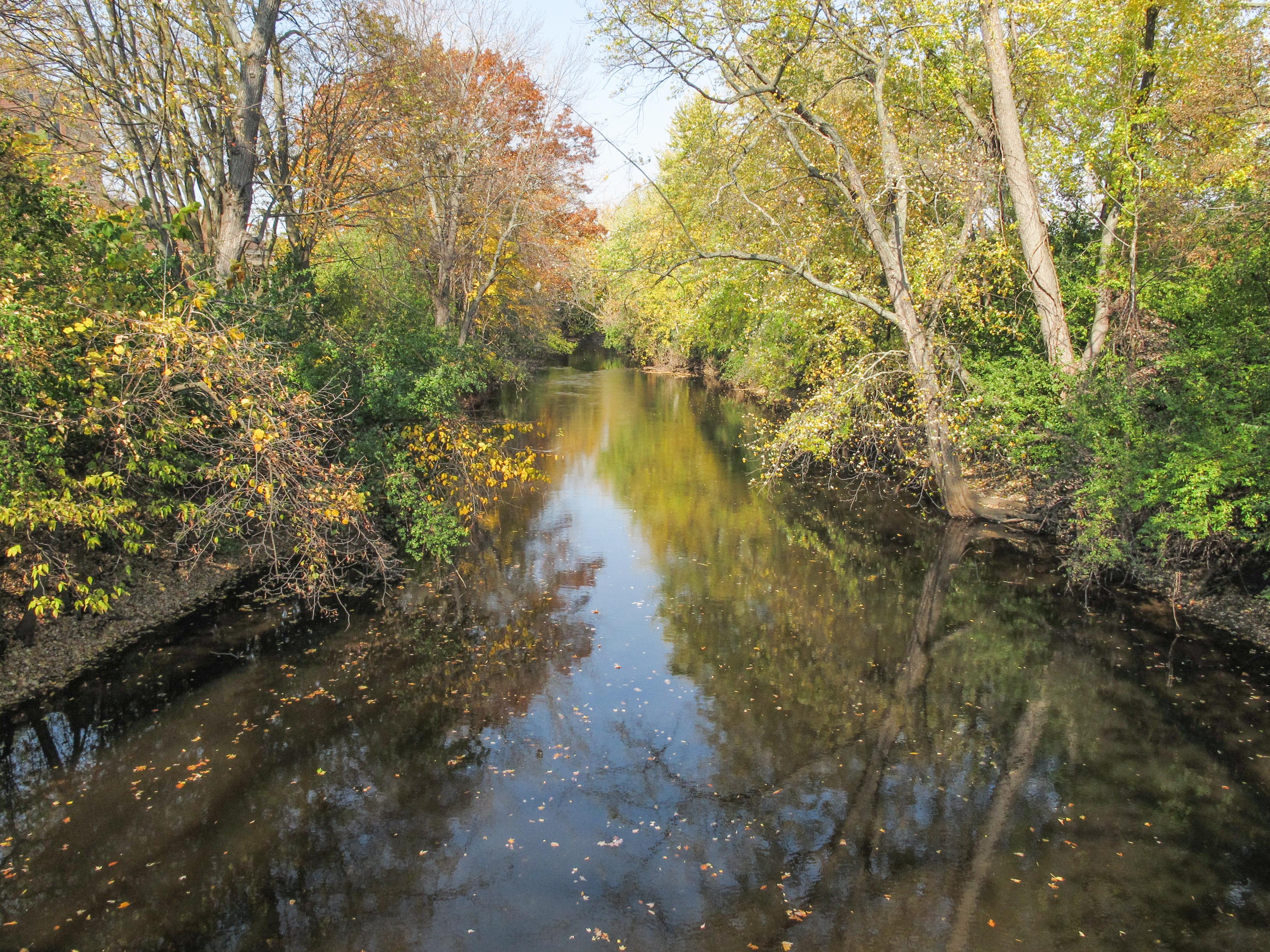 Red Cedar River (Michigan) - Wikipedia