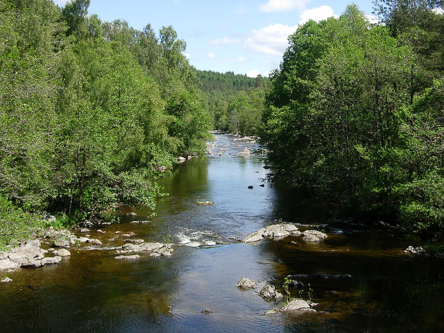 River Affric - geograph.org.uk - 1088506