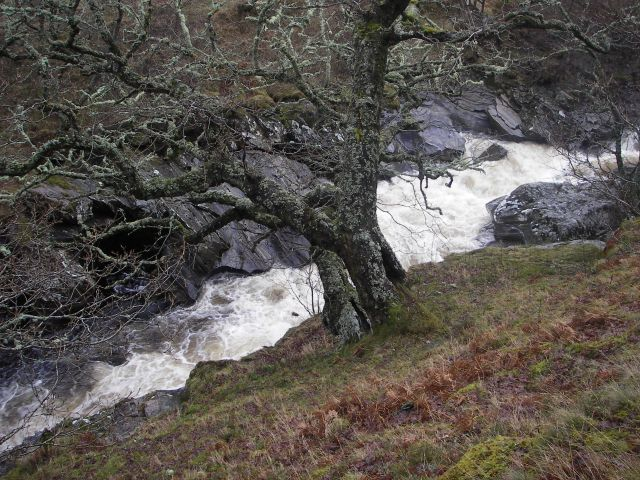 River Calder - geograph.org.uk - 303644