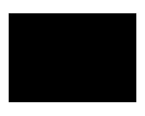 SES — Википедия