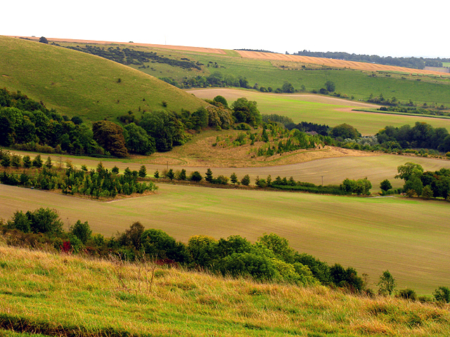 File:The South Western Slopes of Walbury Hill - geograph.org.uk - 62332.jpg