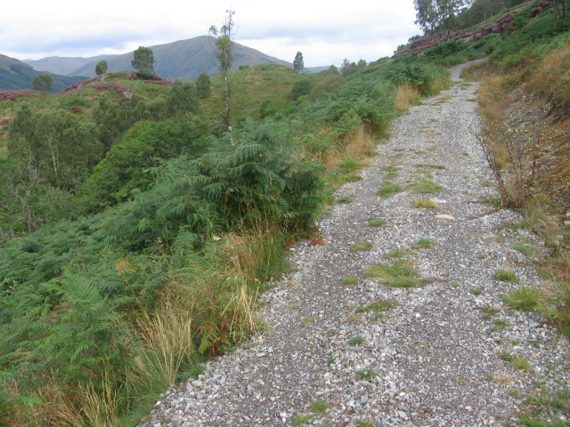 Trail in Glen Finglas Woodland Trust - geograph.org.uk - 544022
