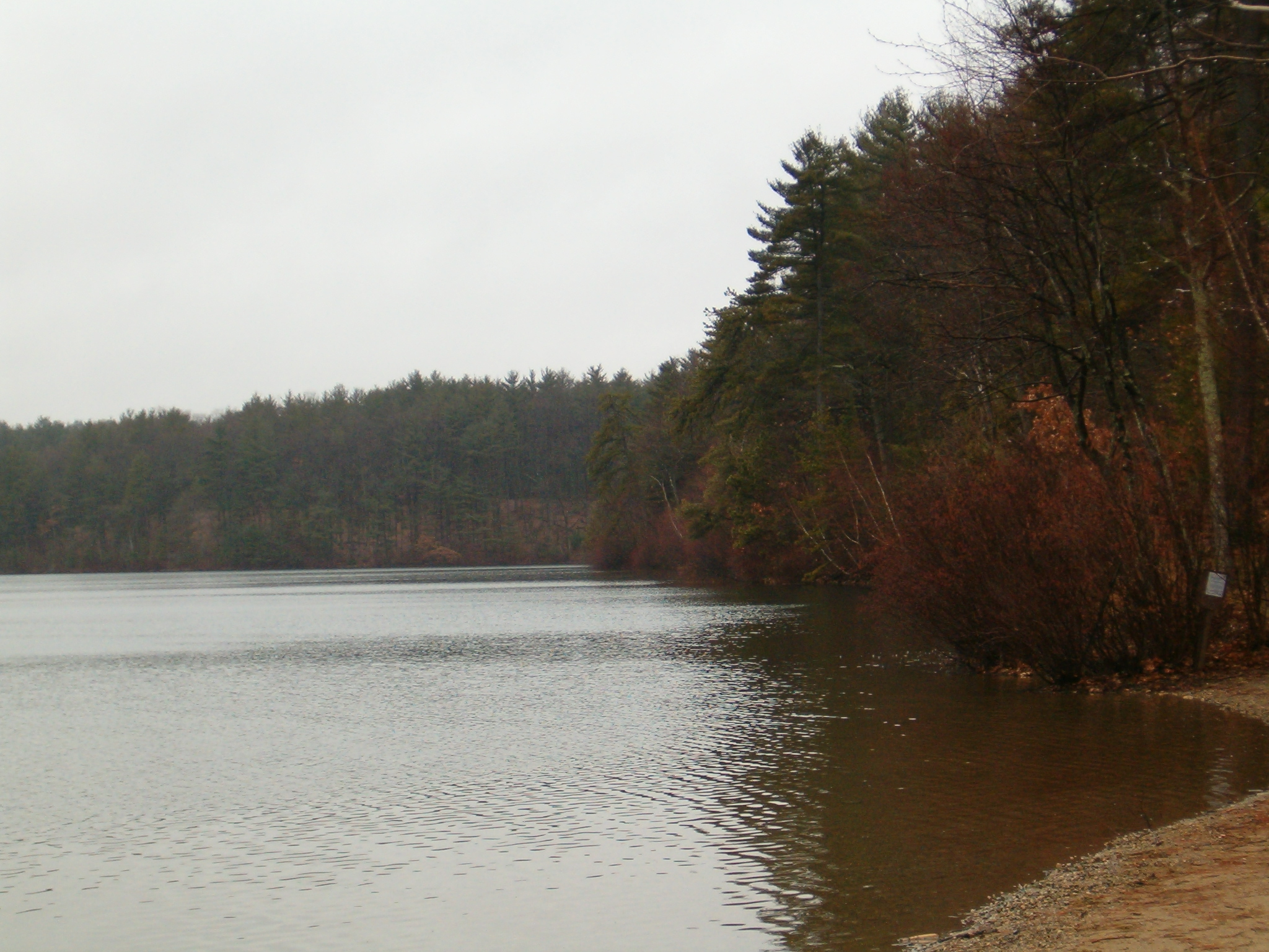 resourcesforhistoryteachers usi 34 walden pond