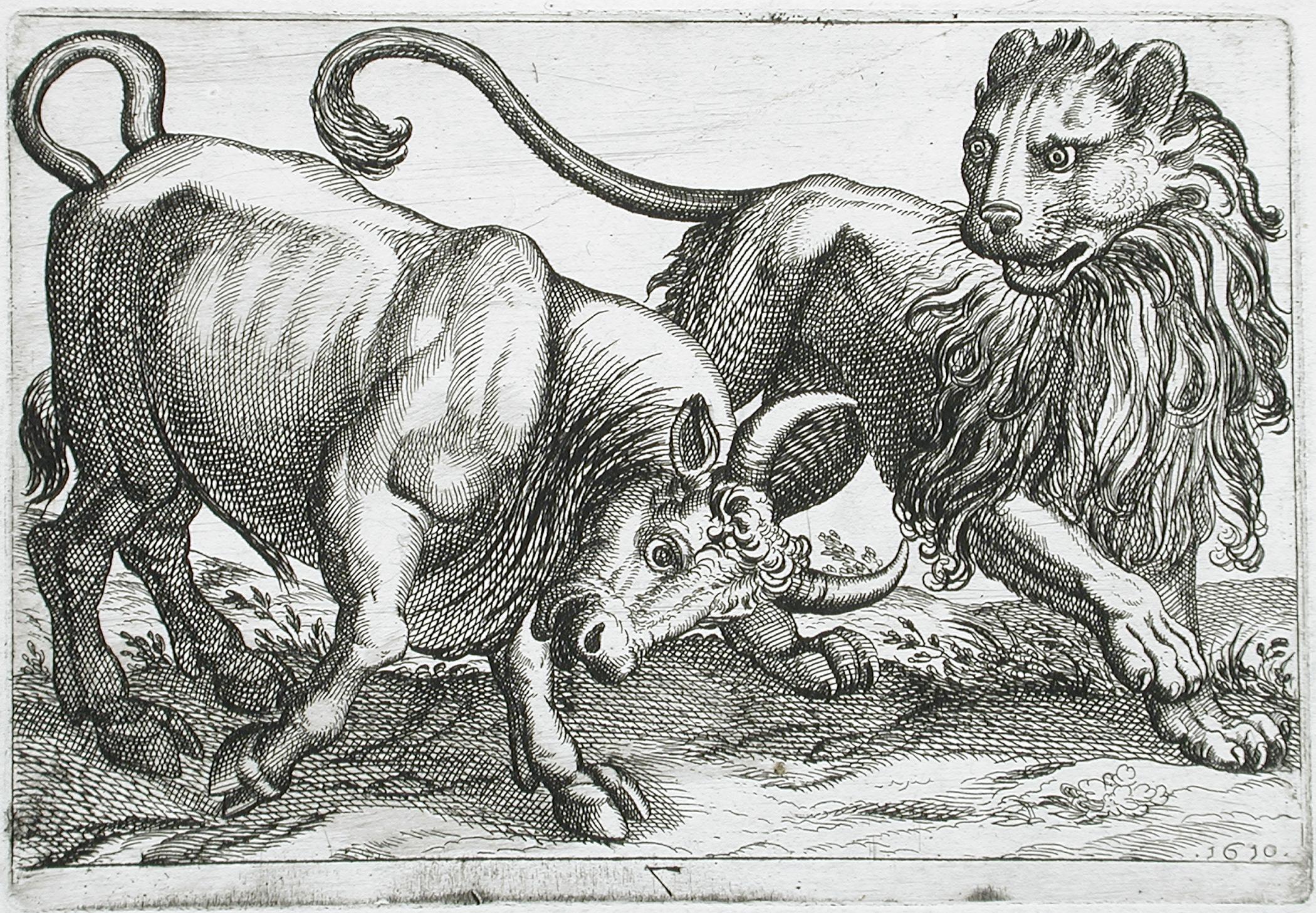 Картинка лев с быком