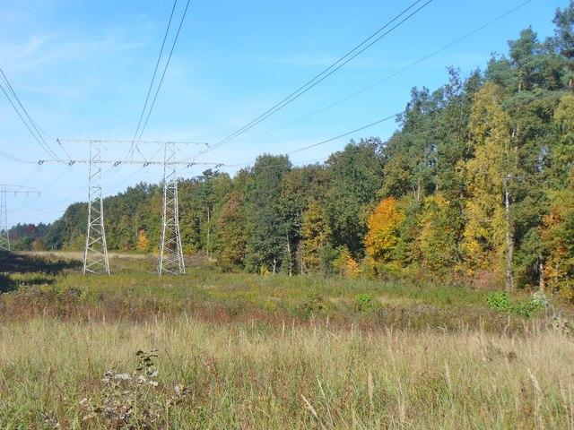 Alt Buchhorst - Stromleitung (Power Line Chain) - geo.hlipp.de - 43359.jpg