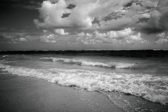 Ocean Black And White