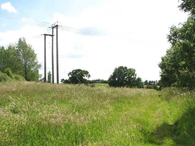 Boudica's Way - this way to Long Lane - geograph.org.uk - 1355452