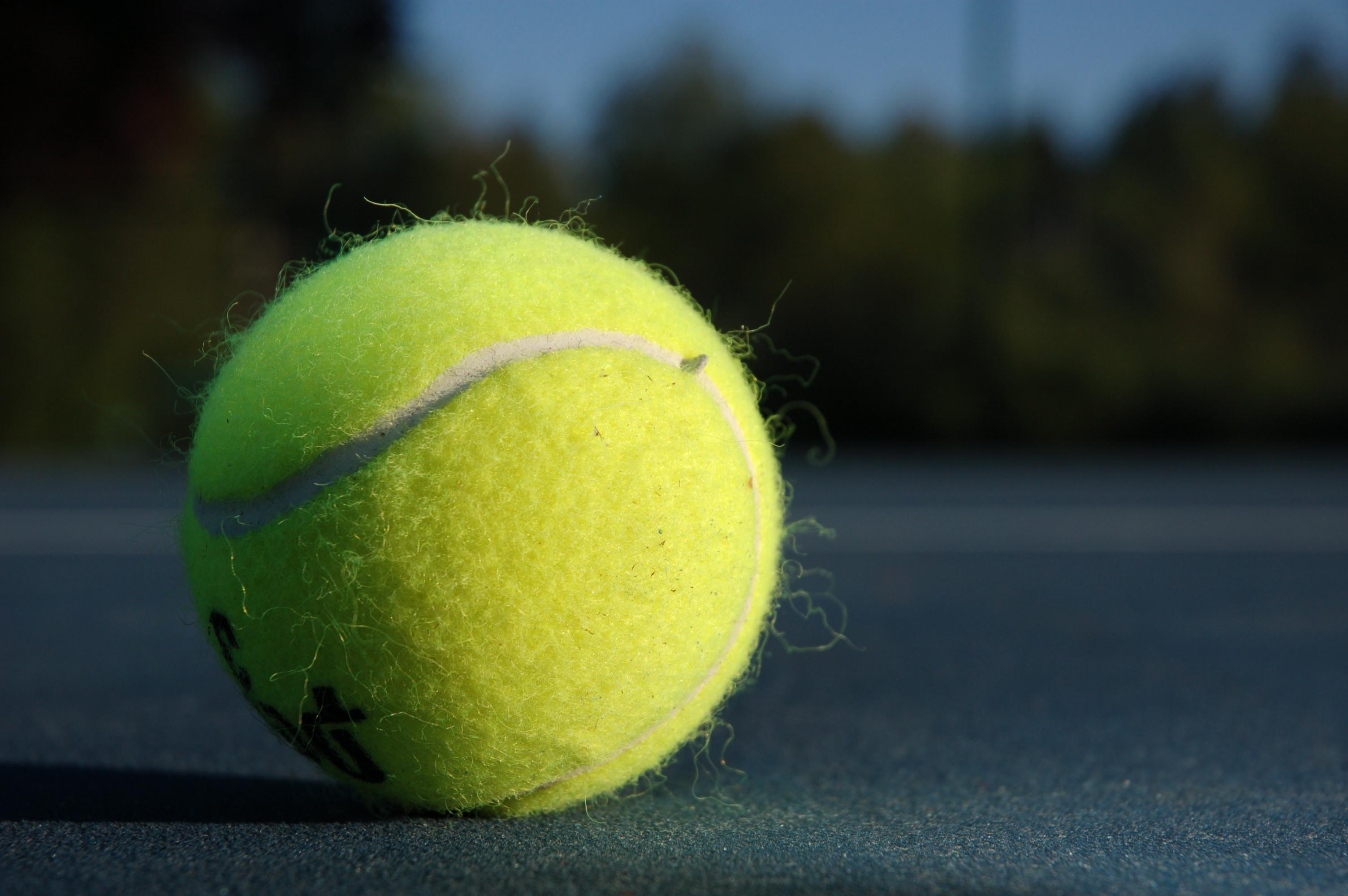 Tennis Ball Theorem Wikipedia