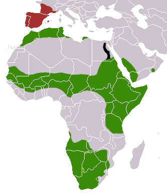 http://upload.wikimedia.org/wikipedia/commons/4/41/Common_Genet_area.png