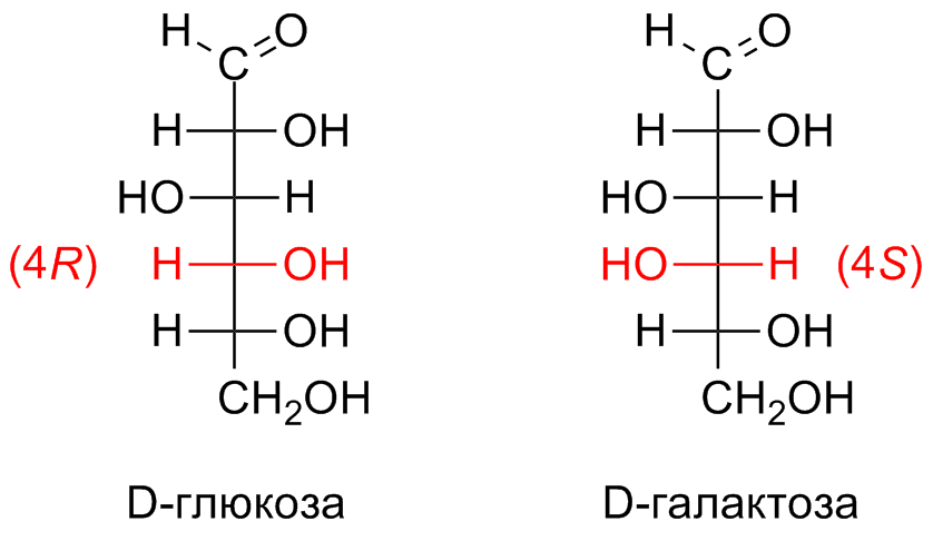 Examples Of Enantiomers And Diastereomers http://commons.wikimedia.org/wiki/File:Diastereomers_example.png