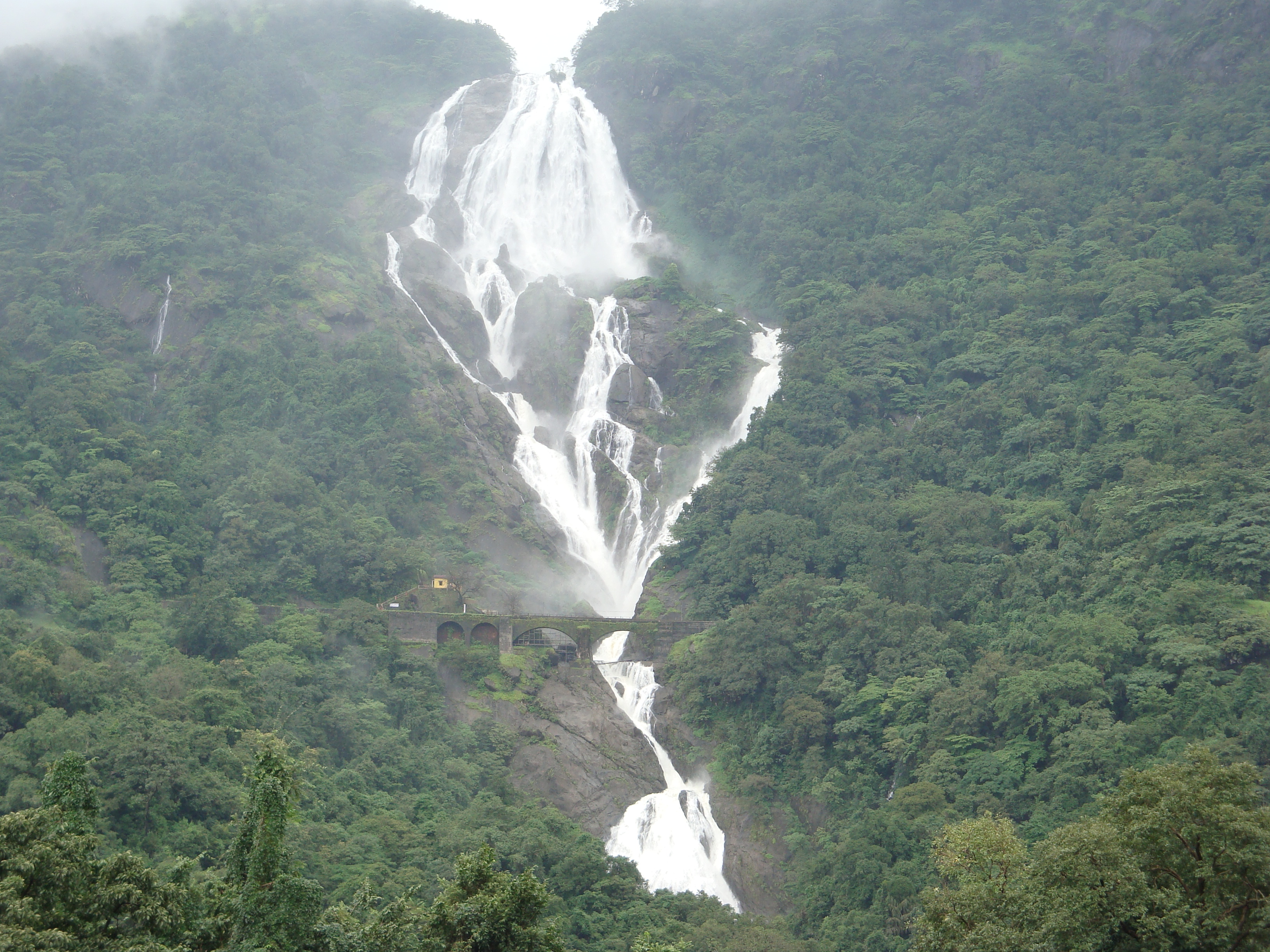 Dudhsagar Falls, during Monsoon, with the trees of the forest surrounding it.