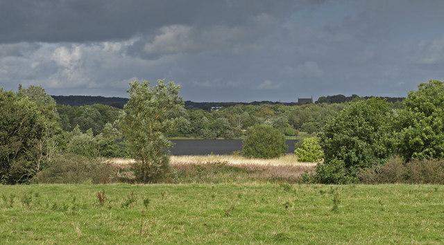 Eglinton Country Park - geograph.org.uk - 1465180