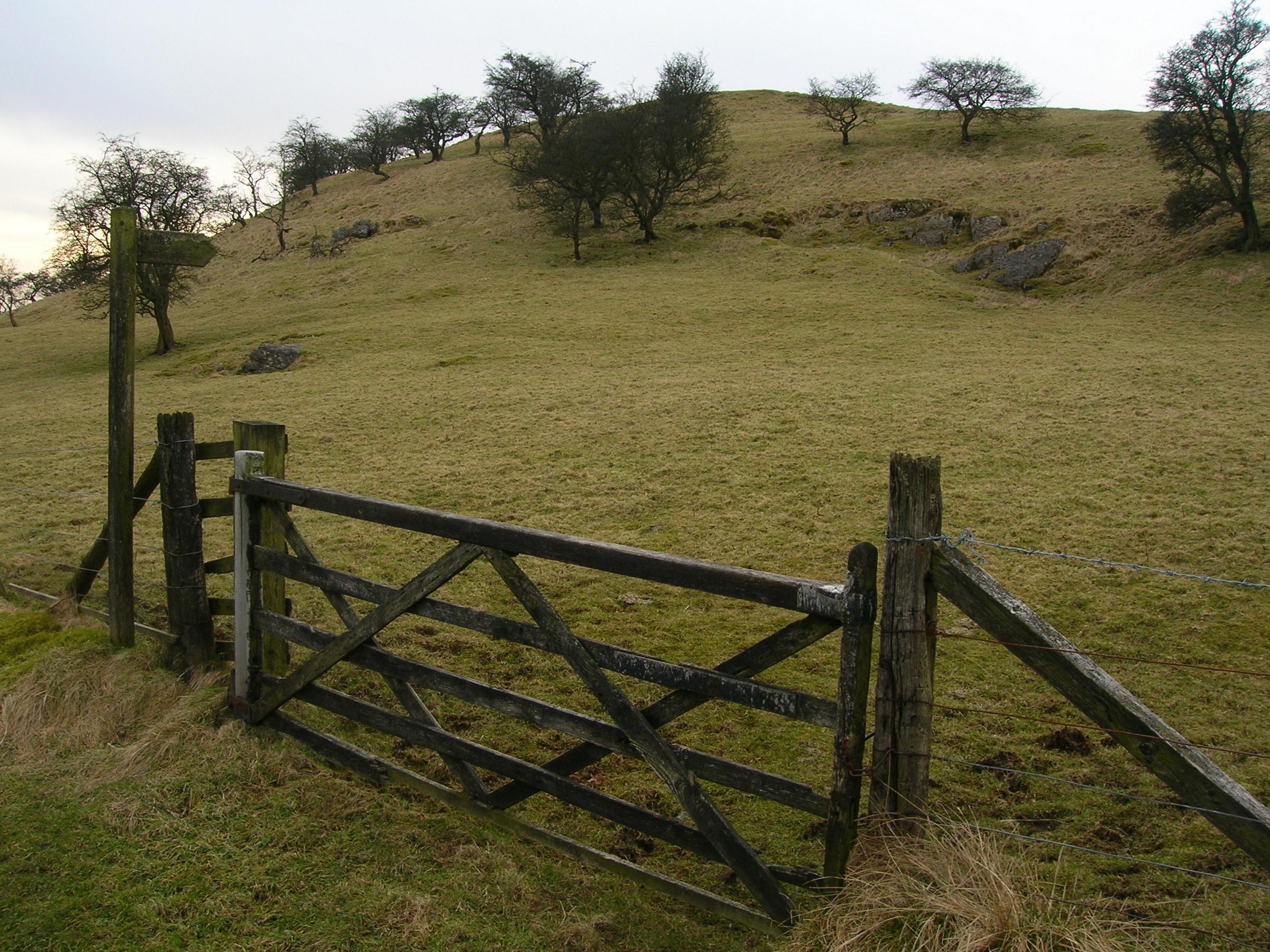 File Farm Gate Near Dinkling Green