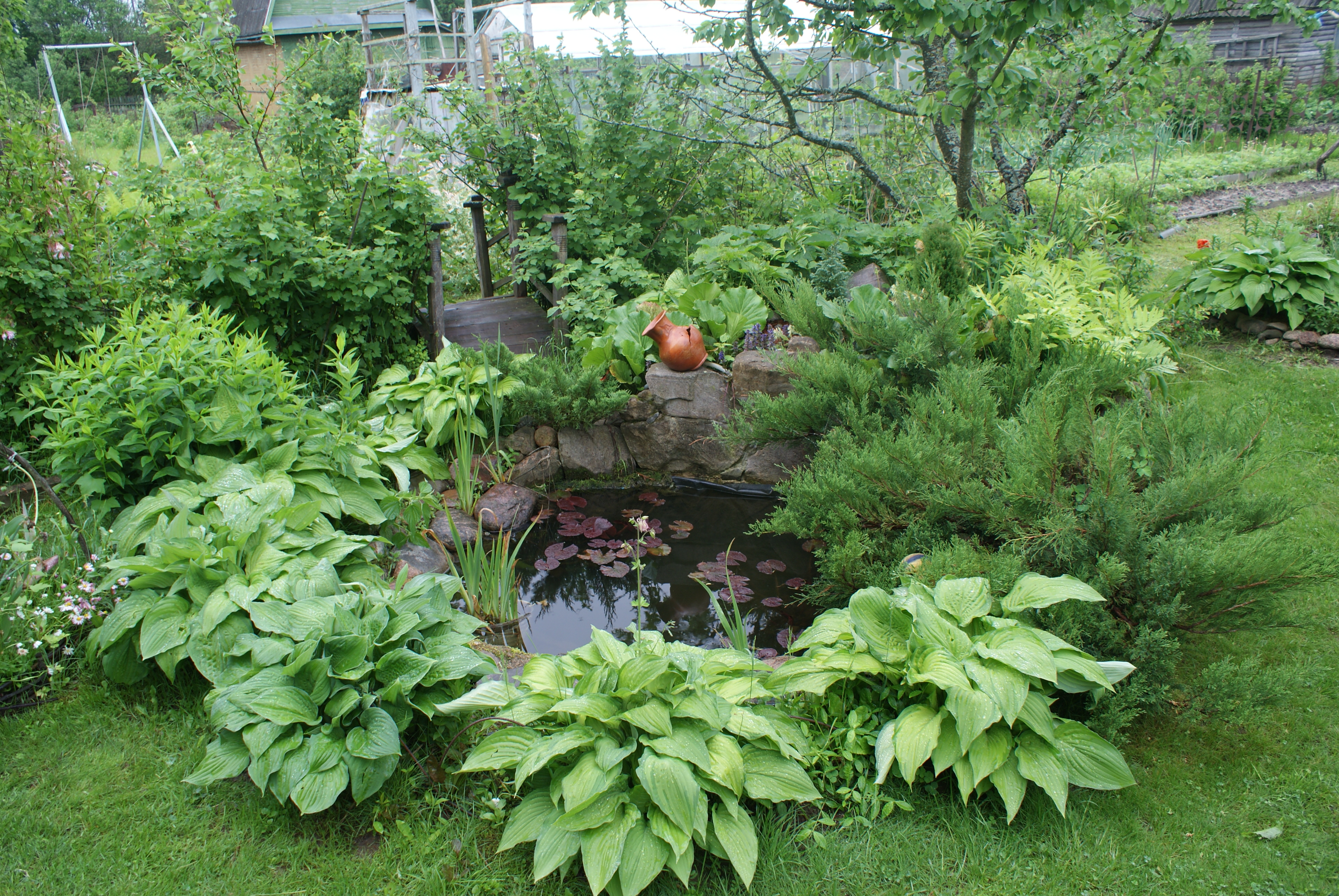 File Garden Ponds In Belarus Jpg