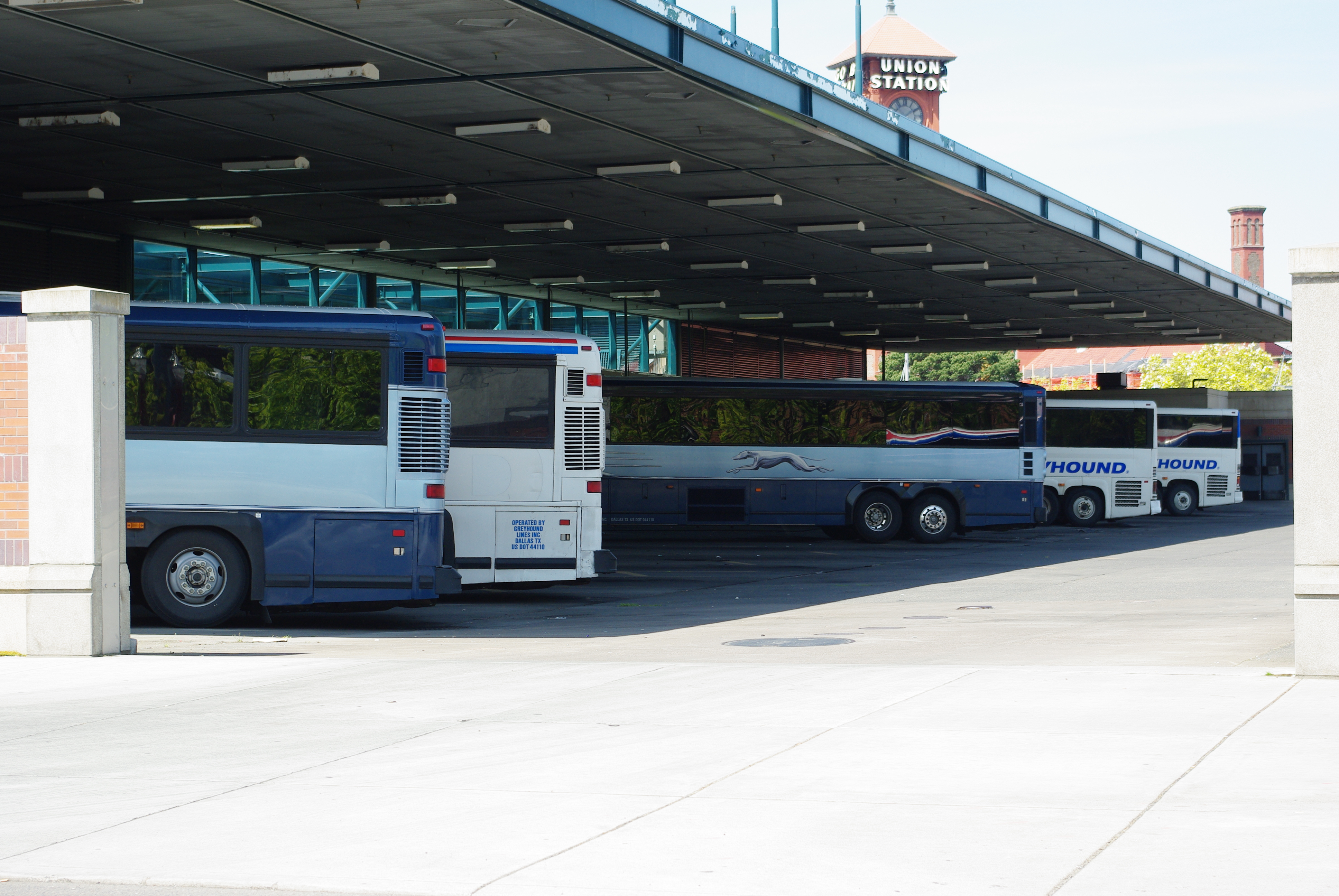 Greyhound is a leading bus company based in Dallas, Texas, serving over destinations across North America, Mexico and Canada. Greyhound carries around 18 million passengers a year who travel billion miles ( billion km) a year on their fleet of around vehicles.