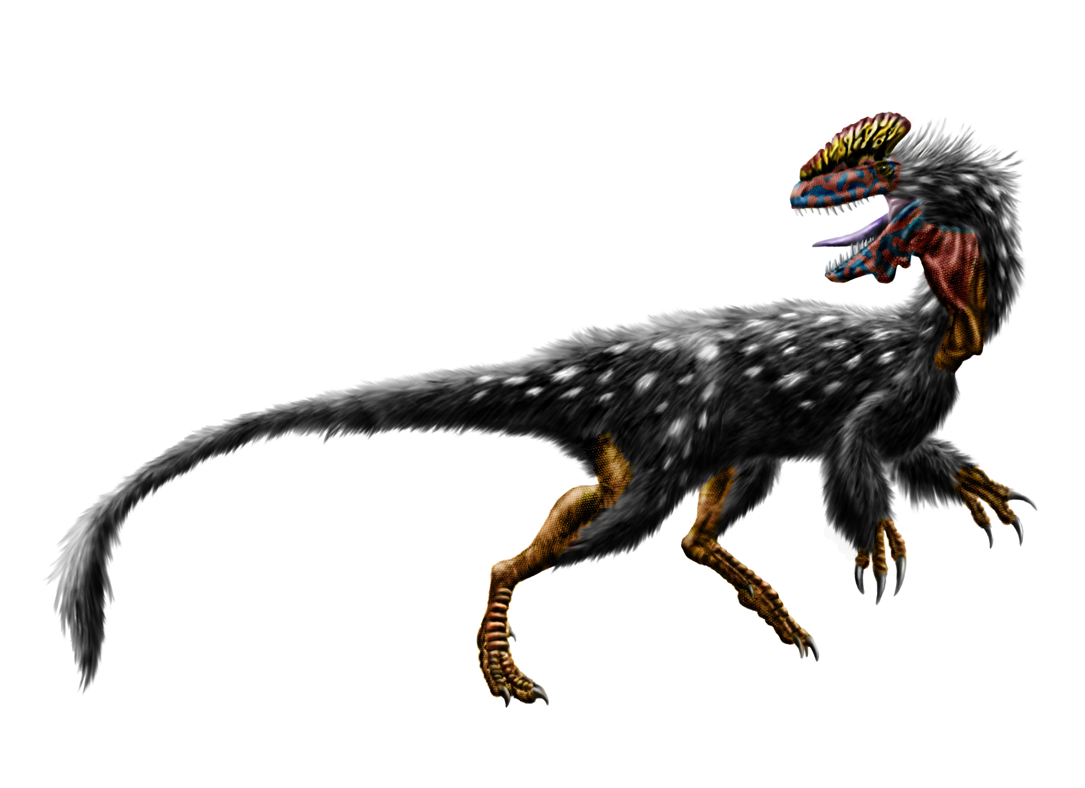 """Résultat de recherche d'images pour """"utahraptors"""""""