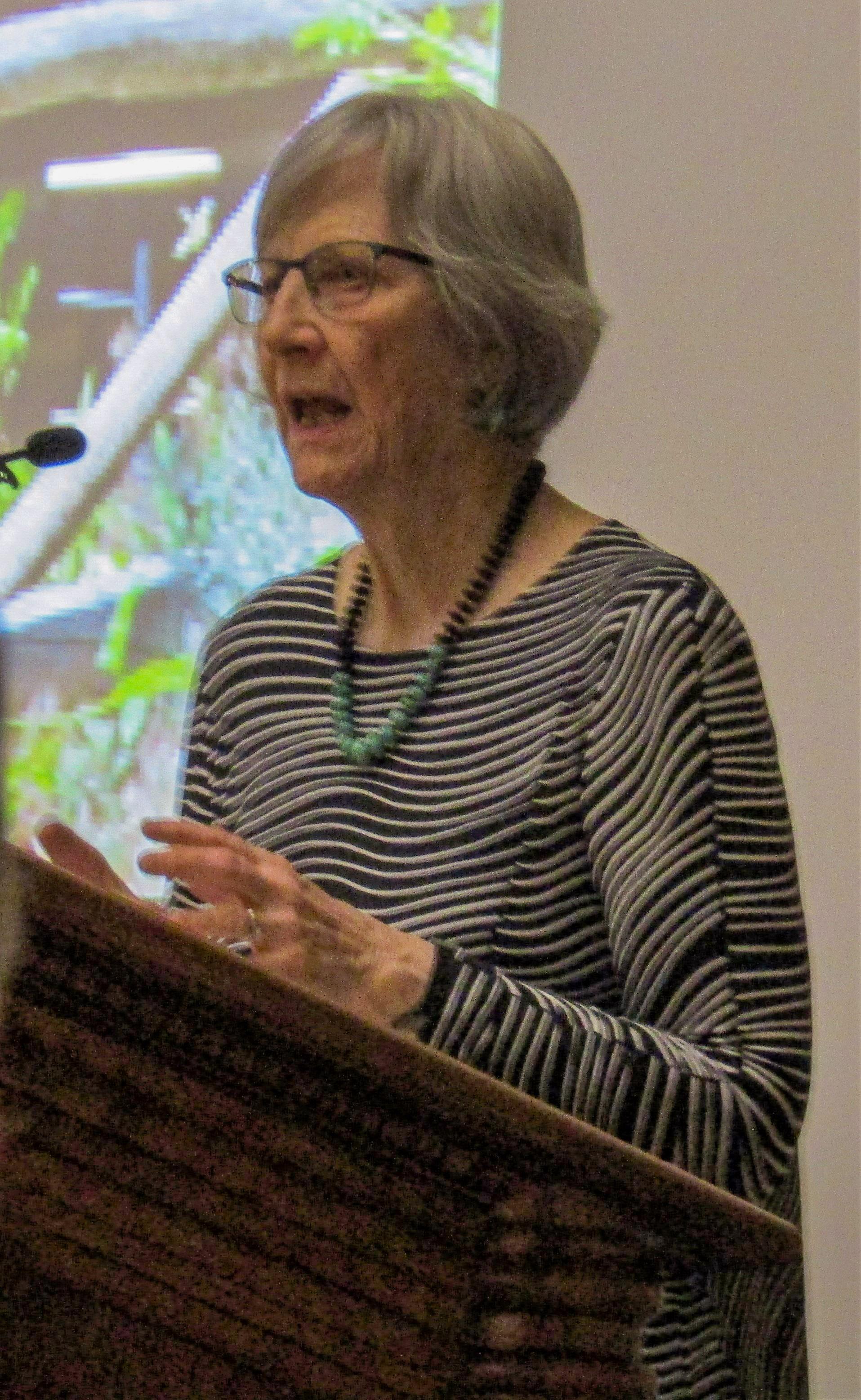 Professor Ulrich in 2017