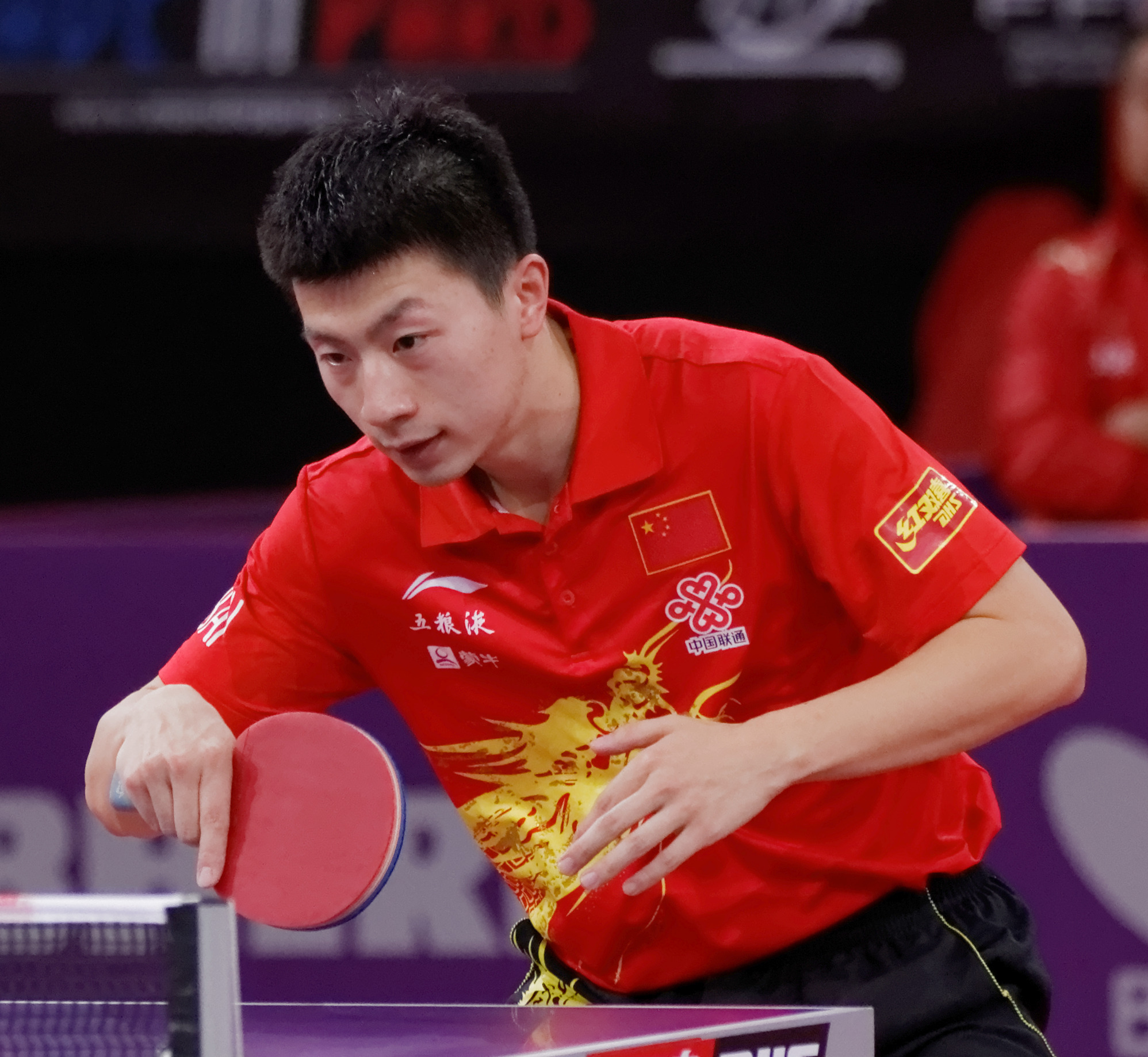 The 31-year old son of father (?) and mother(?) Ma Long in 2020 photo. Ma Long earned a  million dollar salary - leaving the net worth at 20 million in 2020