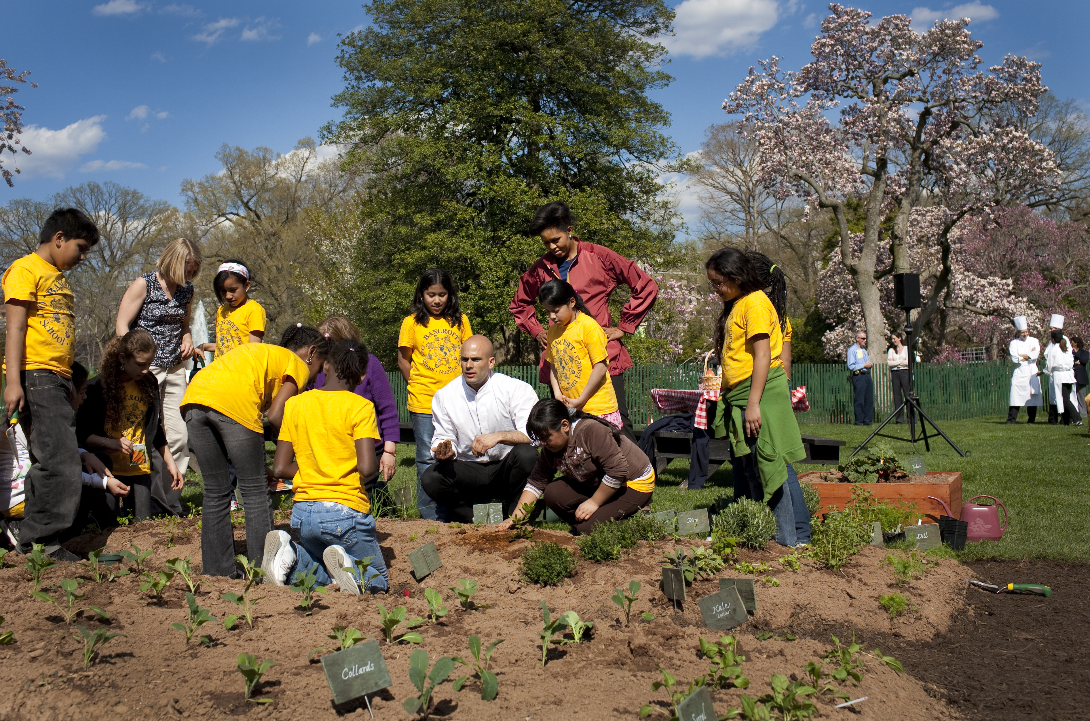 Students from Bancroft Elementary gardening in the White House Vegetable Garden.