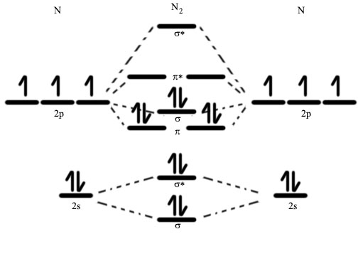 Molecular orbital diagram of dinitrogen molecule, N2. There are five bonding orbitals and two antibonding orbitals (marked with an asterisk; orbitals involving the inner 1s electrons not shown), giving a total bond order of three. N2MolecularDiagramCR.jpg