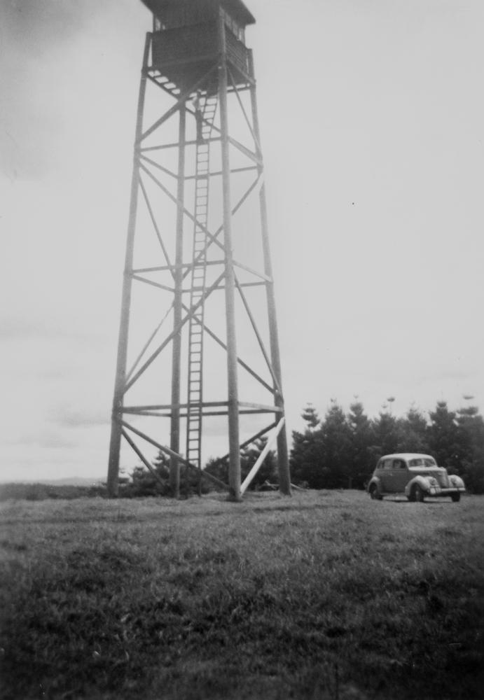 filestatelibqld 2 294915 forestry fire lookout tower