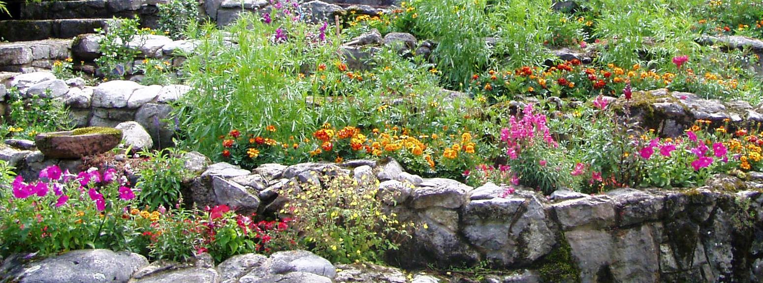 Als Steingarten bezeichnet man eine Gartenanlage , welche unter