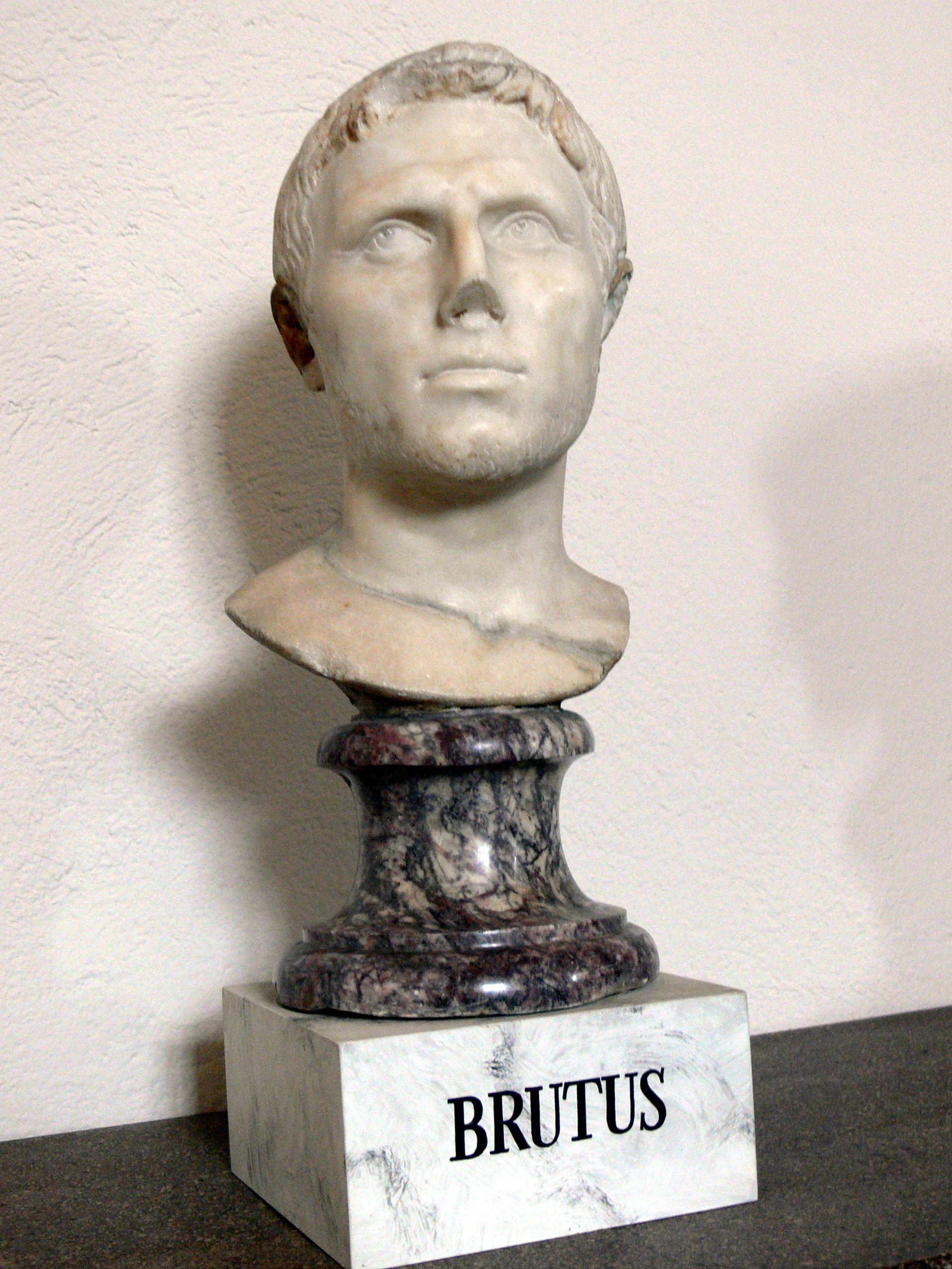 characterzation of marcus brutus This lesson is a biography of the life and background of marcus junius brutus, one of julius caesar's primary assassins and later a rebel who held.