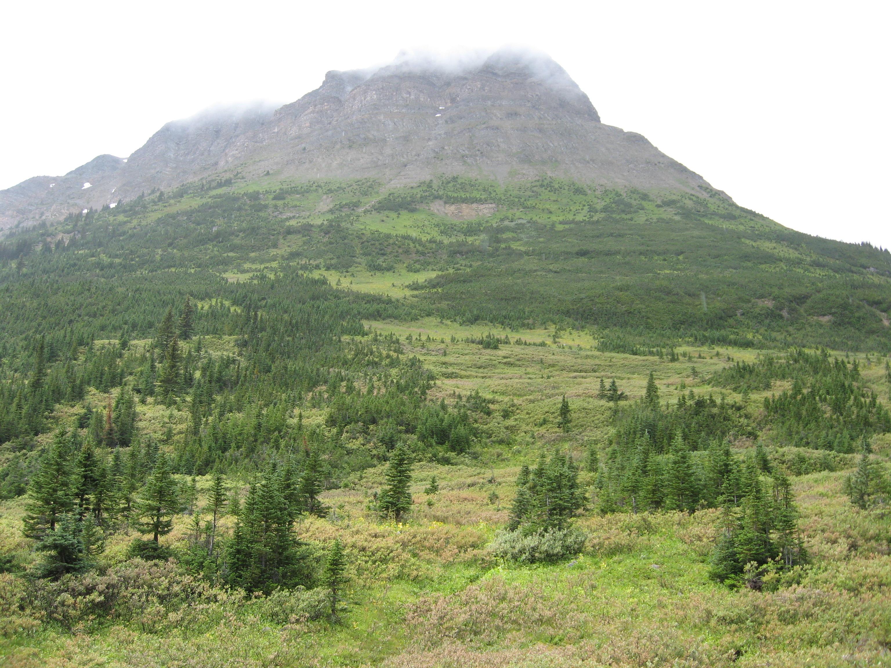 Fichier:Tete Roche-Yellowhead Mountain.jpg