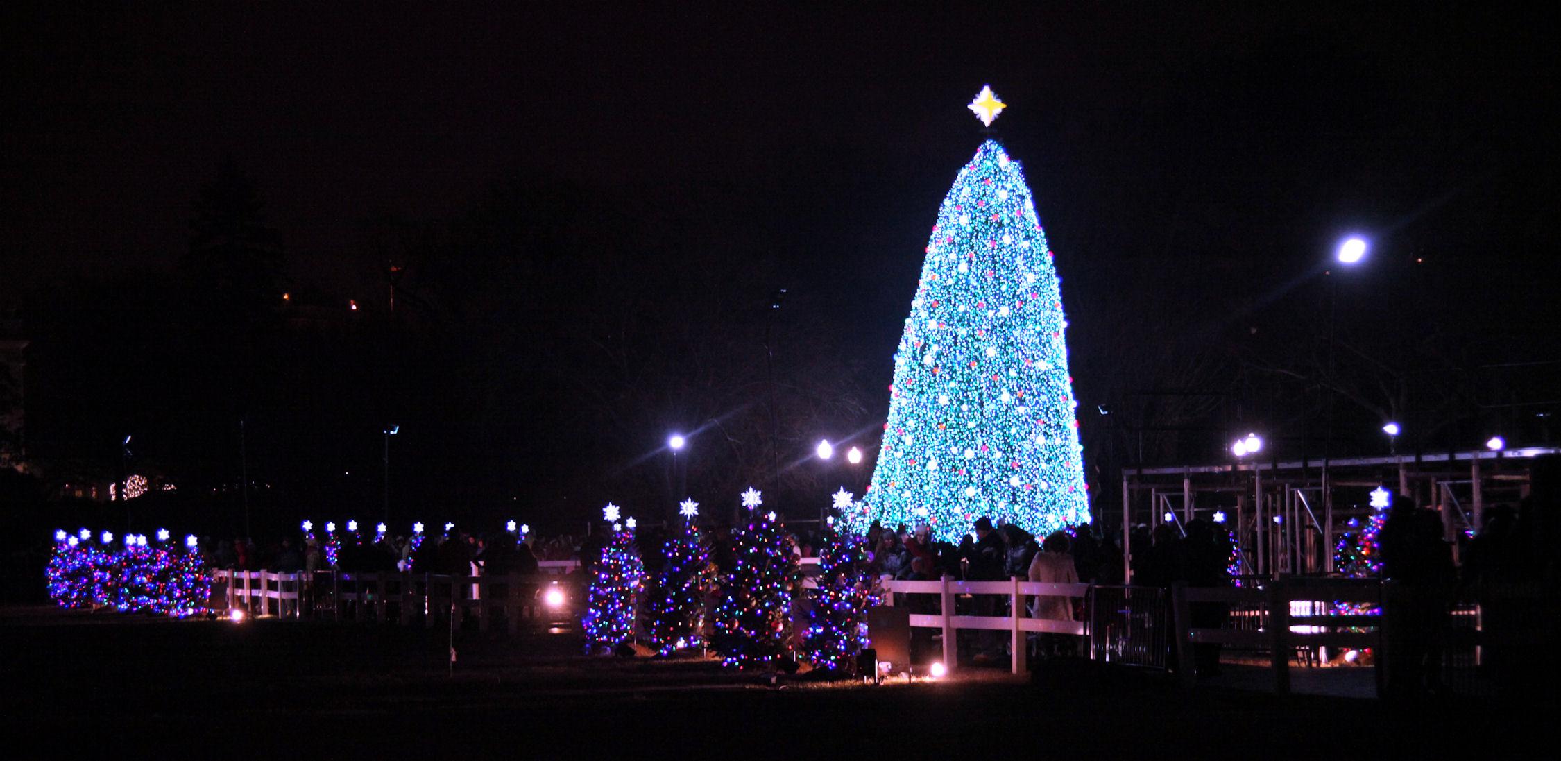 File:US National Christmas Tree 2010.jpg - Wikimedia Commons