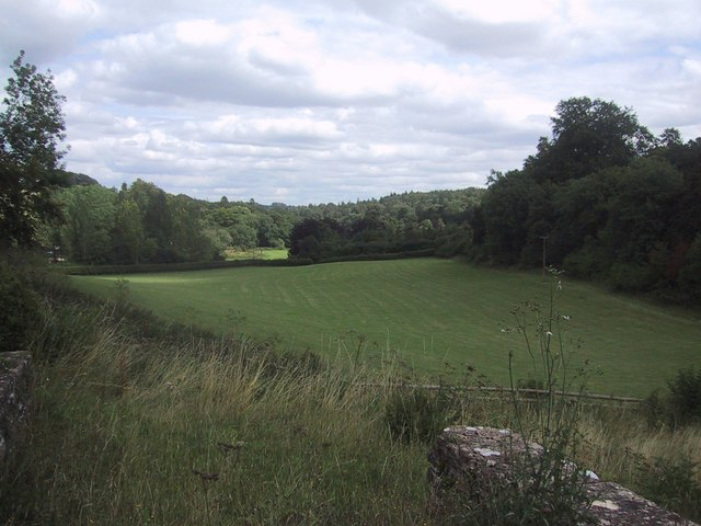 Unexcavated lower field at Chedworth Roman villa - geograph.org.uk - 1427075