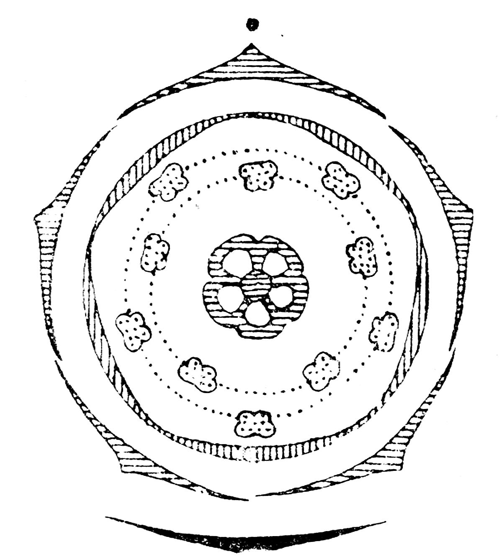 File Vaccinium flowerdiagram Wikimedia mons