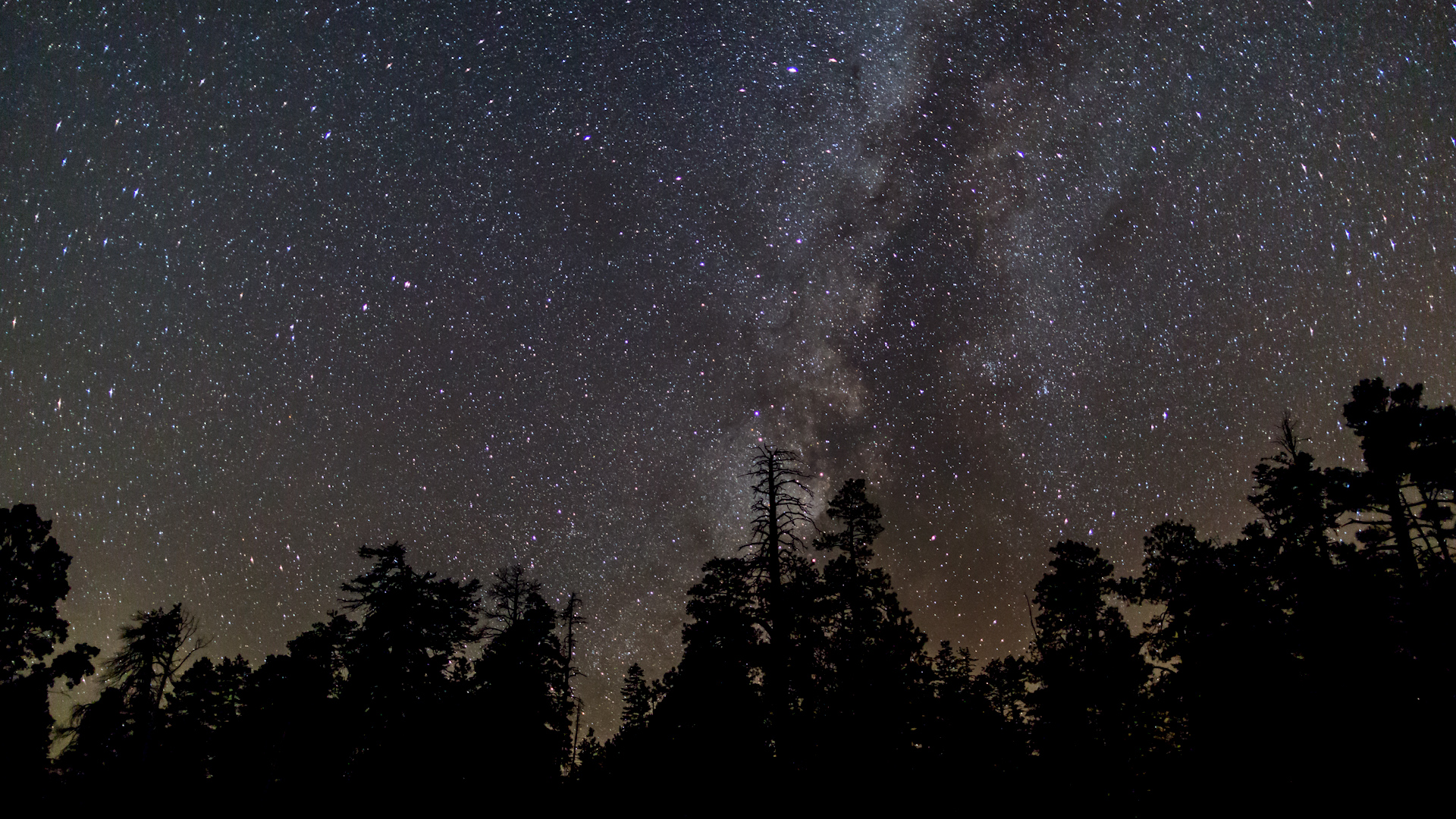 One Cool Thing: Dark Sky Tourism on the Rise